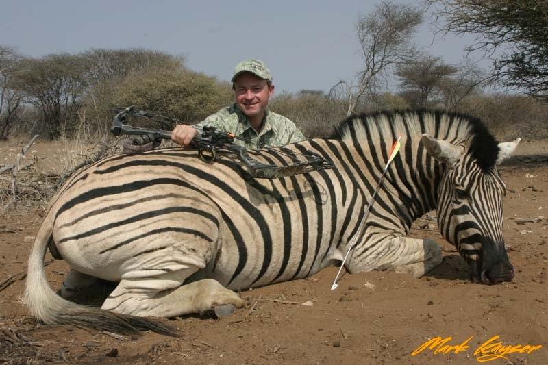BZH1, Mark Kayser with Burchell\'s Zebra shot with Cabela\'s Lazer Pro Supreme broadhead, copyright Mark Kayser