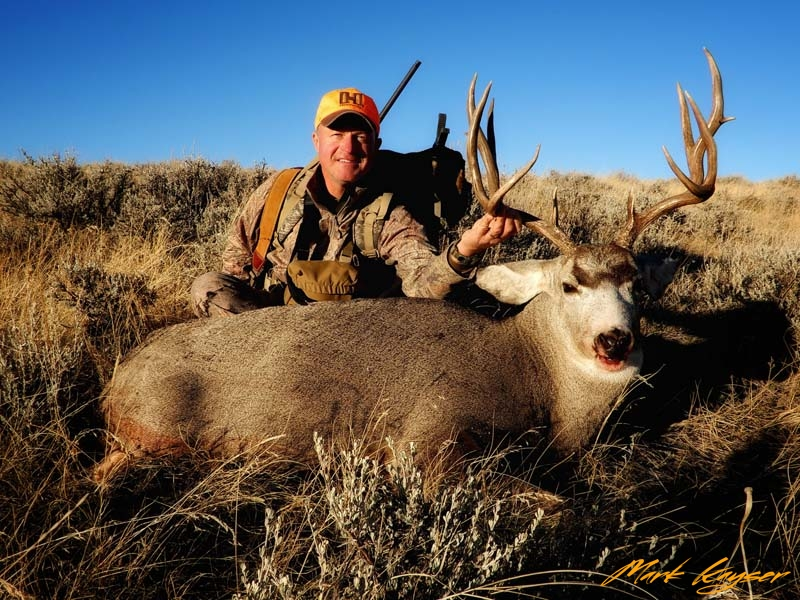 MH, 2017 Mark Kayser mule deer success, copyright Mark Kayser