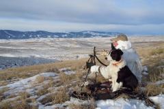 CH383, Mark Kayser and Sage calling coyotes, copyright Mark Kayser